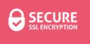 logo_secure 1
