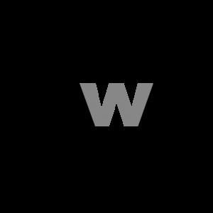 150x150-masterweb-logo-cover 1