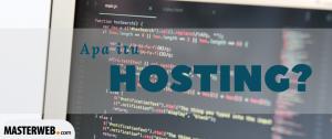 apa itu hosting 1