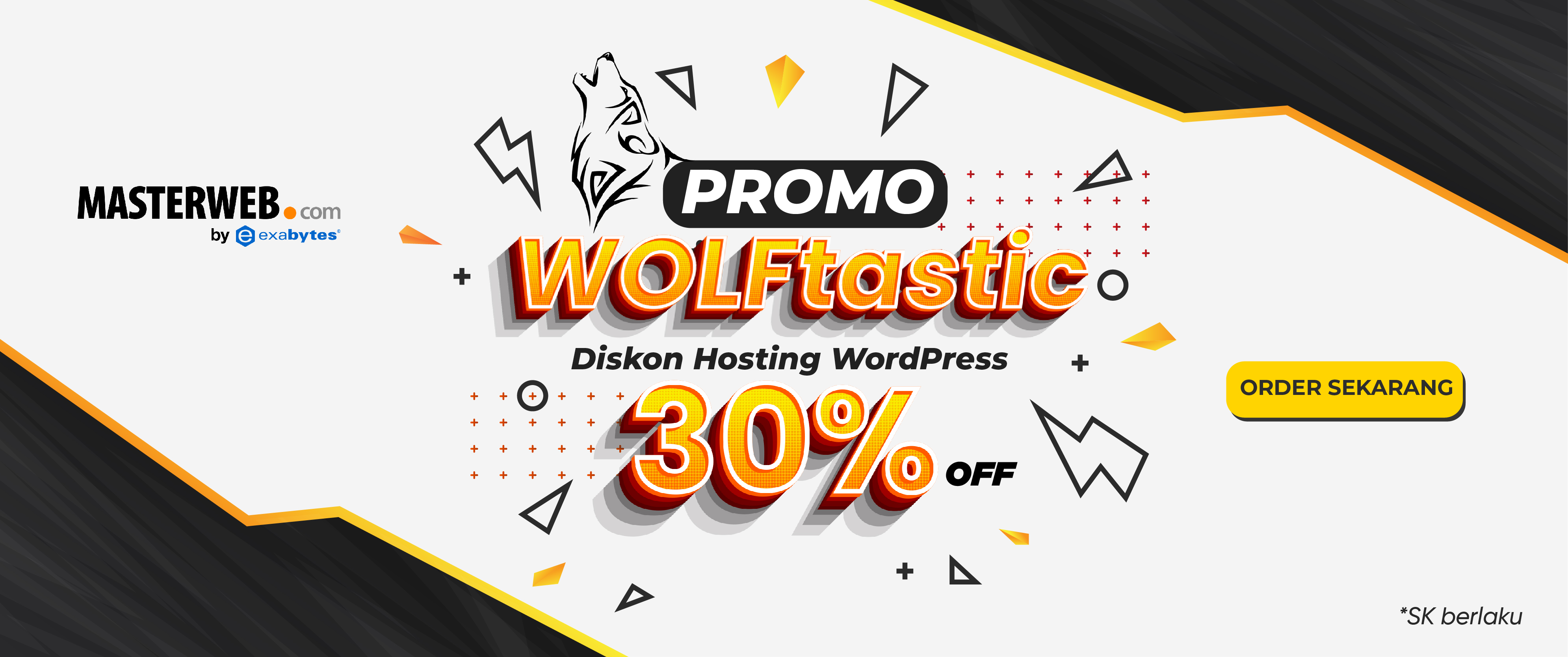 Promo Hosting WordPress